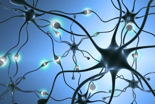 Nevrotransmittere