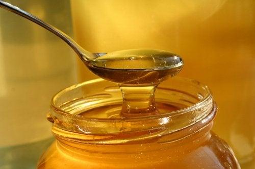 Behandle gastritt med honning