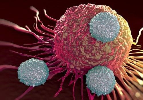 Kreftfceller