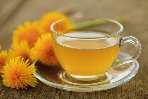 Løvetann-te for å senke blodtrykket