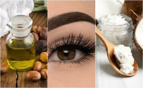 6 vegetabilske oljer for vakre øyenvipper