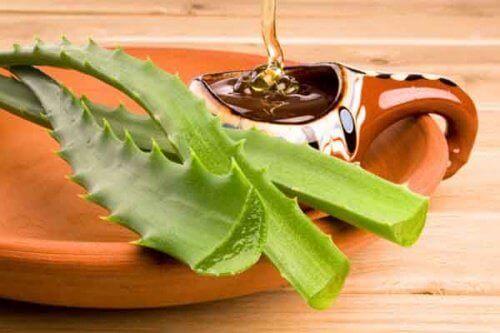 Aloe vera og honning