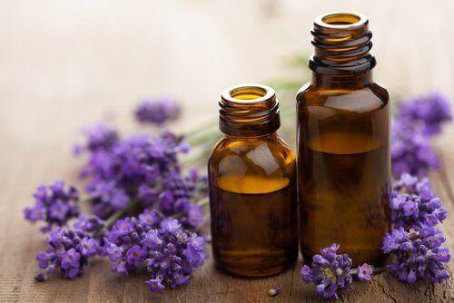 Lavendelolje er soppdrepende