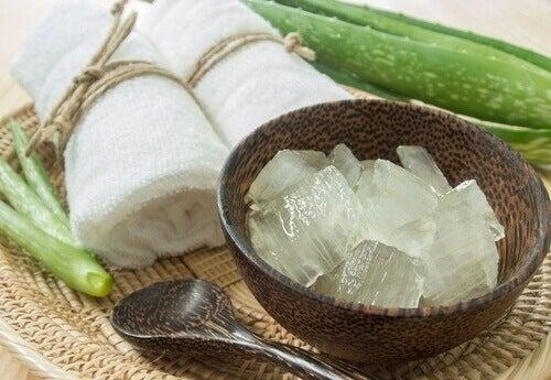 Aloe Vera kan hjelpe deg med å redusere strekkmerker