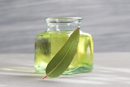 Eukalyptus mot bronkitt