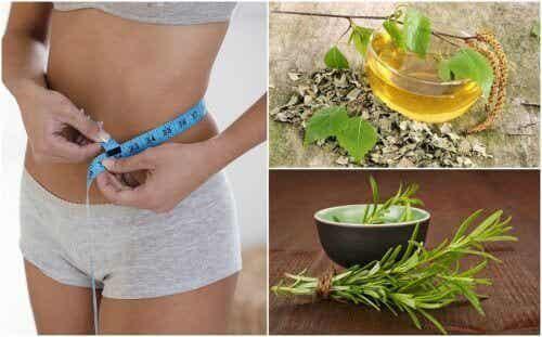 8 sunne urter som vil hjelpe vekttapsdietten din