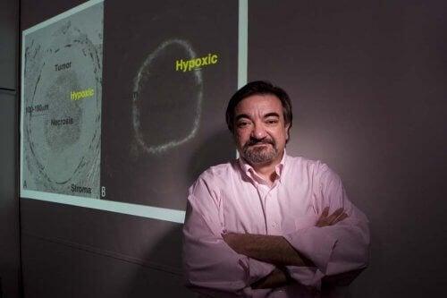 Et nytt molekyl for å behandle eggstokk- og bukspyttkjertelkreft
