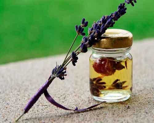 Lavendel er en fantastisk eterisk olje