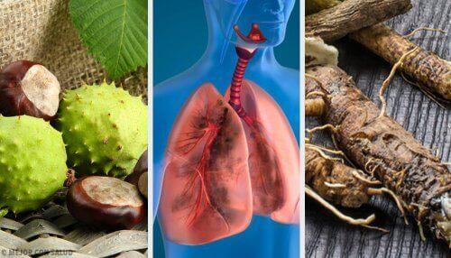 Prøv disse 4 hjemmelagde remediene for å puste bedre og styrke lungene dine