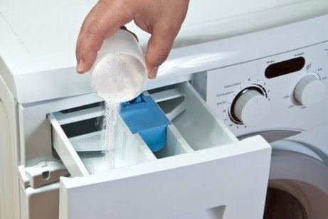 7 tips for å bli kvitt midd i huset Veien til Helse rengjøring