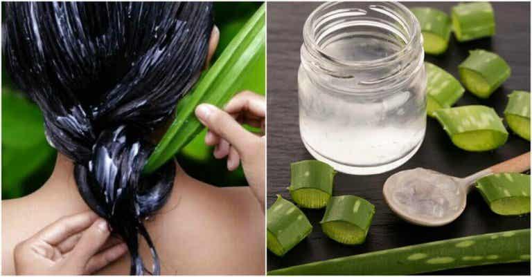 Slik får du sunnere hår med aloe vera