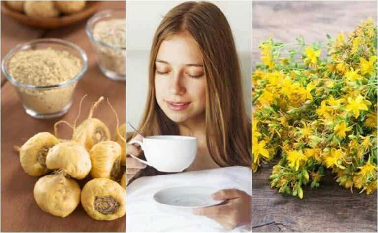 5 medisinske planter som øker kjønnsdriften