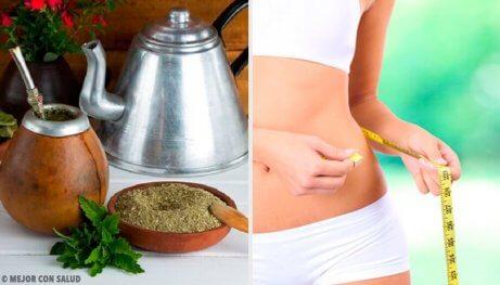Fordelene med Yerba mate: Kan det hjelpe deg ned i vekt?