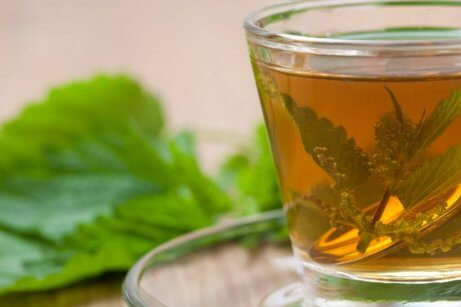 Te med brennesle