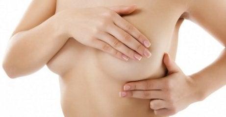 Bryst