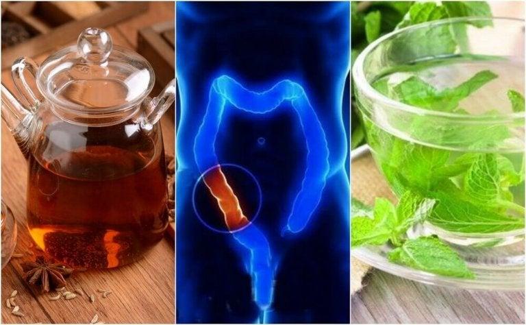 5 medisinske infusjoner for å rense tykktarmen naturlig