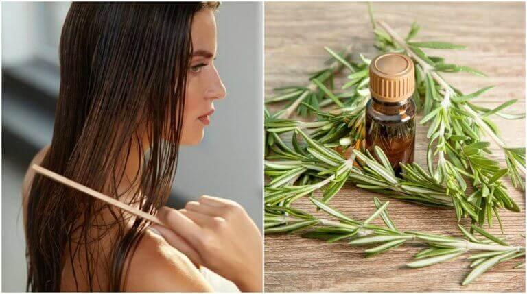 5 interessante fordeler med rosmarin for håret ditt