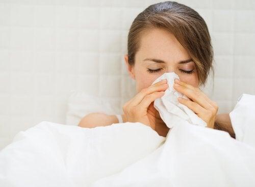 Ingefær mot virus