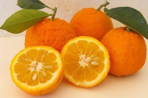 Bitterappelsiner
