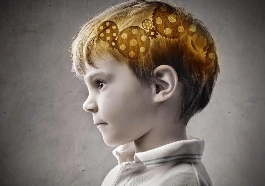 Et barns hjerne