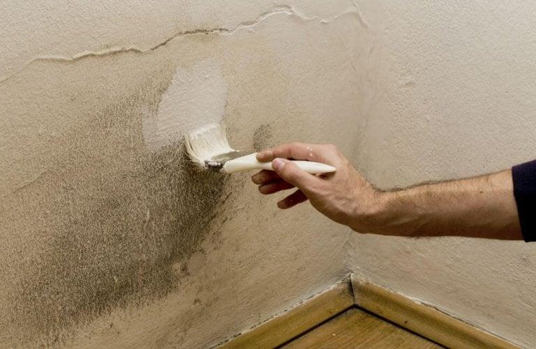5 tips for å fjerne fuktighet i hjemmet