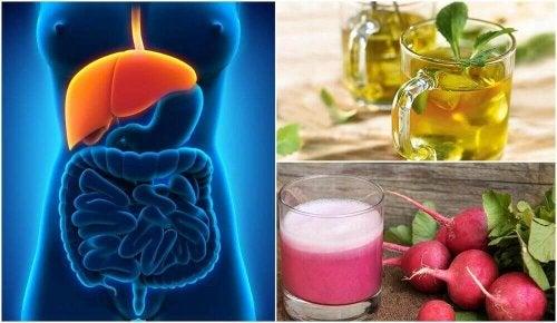 Oppdag hvordan du kan behandle fettlever naturlig