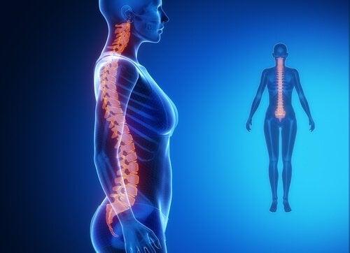Smerter i den nedre delen av ryggraden