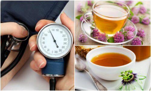 De seks beste urtene for å senke høyt blodtrykk
