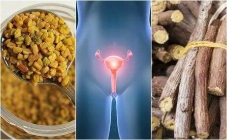 Fem naturlige remedier som hjelper deg å håndtere polycystisk ovariesykdom