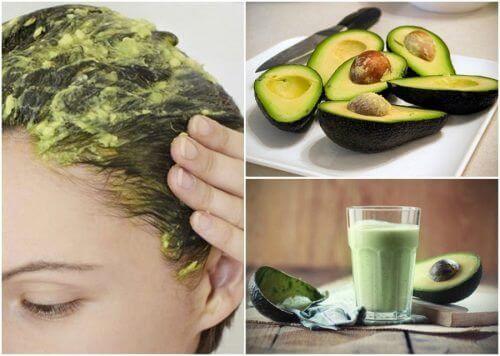 Fem utrolige naturlige remedier med avokado