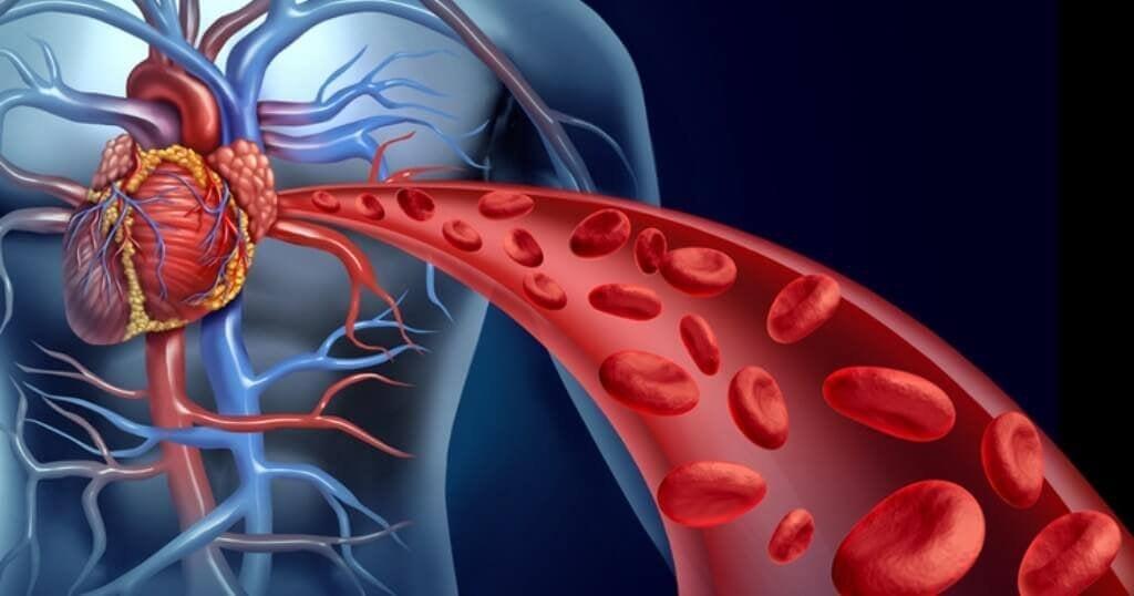 4 naturlige remedier for å stimulere blodstrømmen