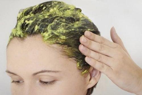 Hårmaske av avokado