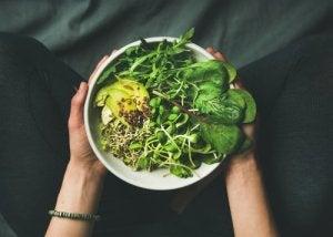 Sunn, grønn mat