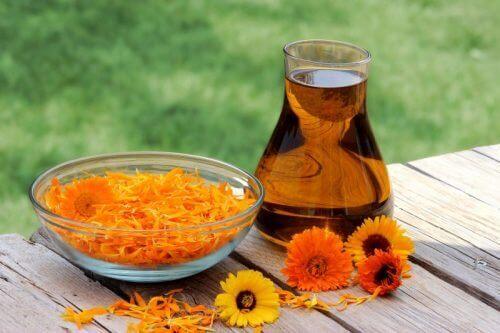 Olivenolje- og ringblomstbehandling