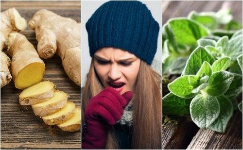 5 plantebaserte midler som hjelper deg med å bli kvitt slim