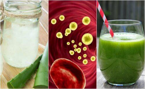 Rens blodet ditt naturlig med 5 medisinske drikker