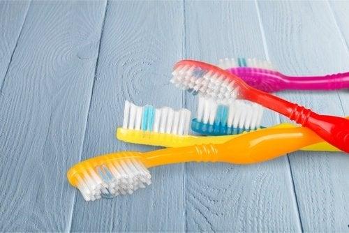 Bakterier i tannkosten