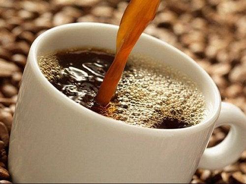 Alt du ikke vet om kaffe: Den fantastiske drikken