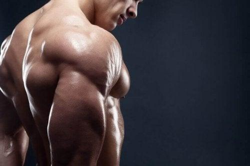 Fire deilige frokoster for økt muskelmasse