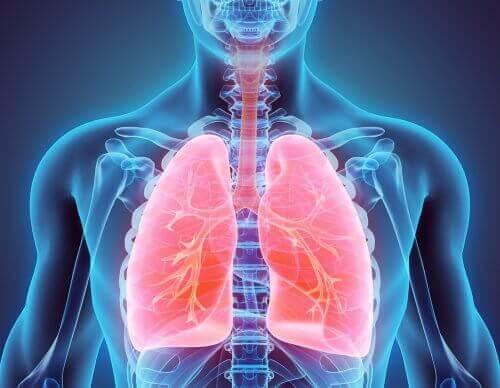 Lær hvordan du slutter å røyke og begynner å rense lungene