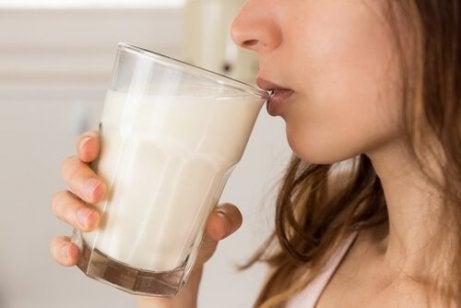 plantebasert melk