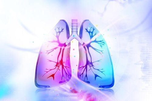 Prøv disse naturlige remediene for å avgifte lungene
