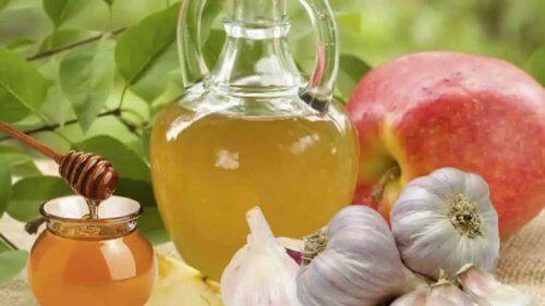 De utallige fordelene med hvitløk og honning