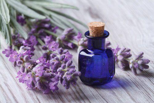Lavendelolje