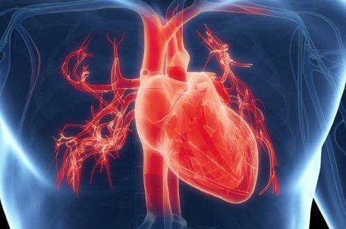 Visste du at det kan være farlig for hjertet å jobbe for mye?