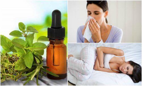 8 naturlige og medisinske bruksområder for oreganoolje