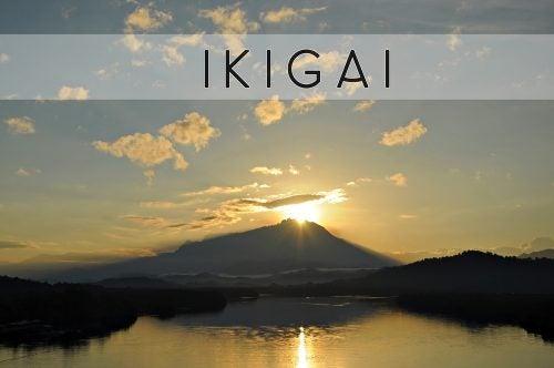 Din Ikigai, den japanske hemmeligheten til et bedre liv