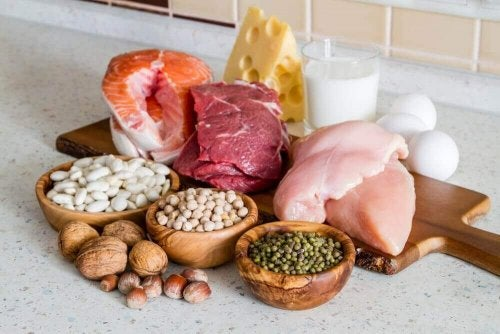 Protein og fett