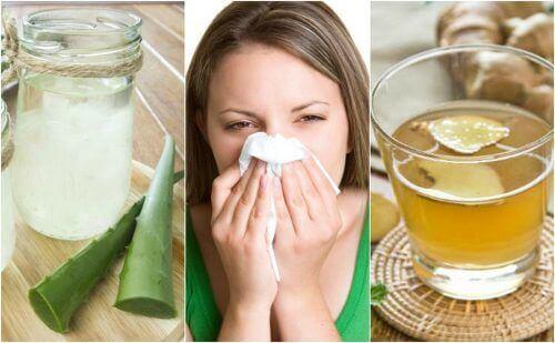 Allergisk rhinitt: 5 naturlige remedier