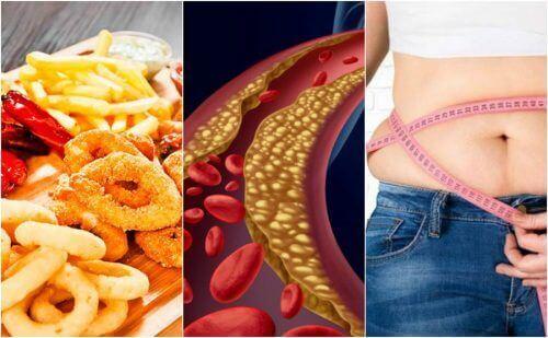 6 faktorer som forårsaker høyt kolesterol